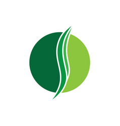 circle green leaves and ecology logo image vector image