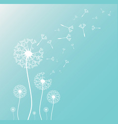 Dandelion silhouette with flying dandelion buds vector