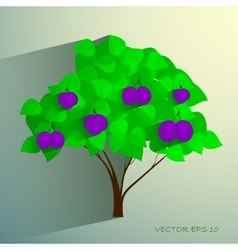 Decorative plum tree with ripe fruits vector image