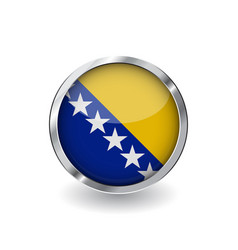 flag of bosnia and herzegovina button with metal vector image