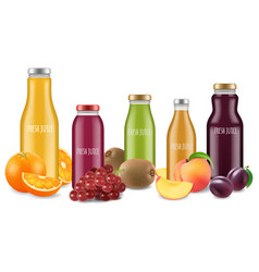 fresh juice set and fruits vector image