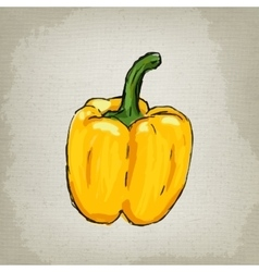 Fresh yellow bell pepper vector image
