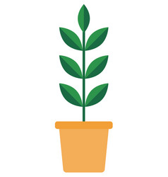 green plant in a ceramic pot icon flat vector image
