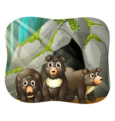 Grizzly bears living in the cave vector image vector image