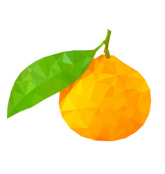 mandarine with leaf polygonal vector image