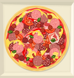 pizza in a box vector image