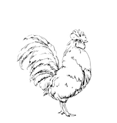 Hand drawn bird chicken sketch New year vector image