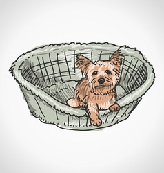 Yorkshire Terrier in Basket vector image