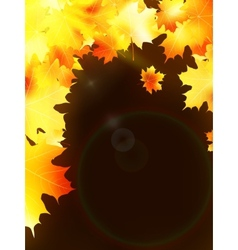 Autumn leaves on colorful plus EPS10 vector image
