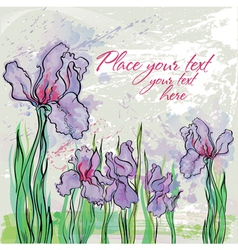 Background with irises vector