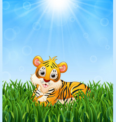 Cartoon tiger lay down in the grass on a backgroun vector