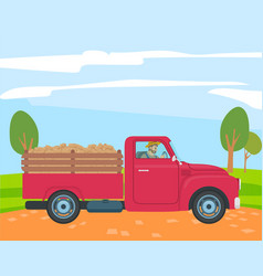 farmer driving truck with potato in trunk farming vector image