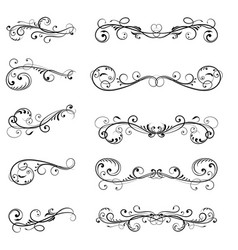 floral divider black filigree decorations vector image