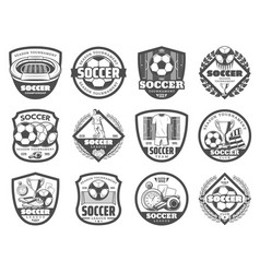 Football or soccer league heraldic shield badge vector