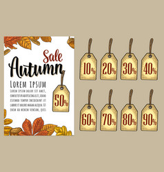 poster sale autumn lettering with set leaf vector image