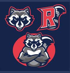 Racoon in sport mascot vector