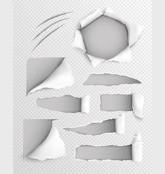 torn paper realistic transparent set vector image
