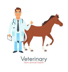 veterinarian doctor with horse vector image