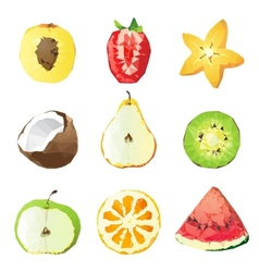 fruit pieces vector image vector image