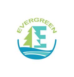 Eco logo evergreen logo logo template vector
