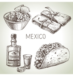 Mexican traditional food Hand drawn sketch vector image vector image