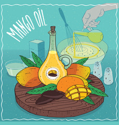 Mango seed oil used for cooking vector