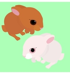 rabbit white and brown cartoon animal isolated vector image