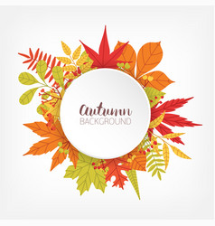 white circle surrounded by various colorful autumn vector image