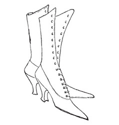 lace-up shoes design are knee length vintage vector image