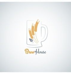 beer mug barley design background vector image