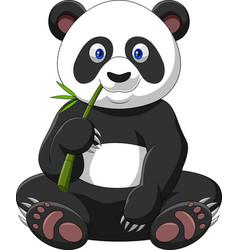 Cartoon panda eating bamboo vector