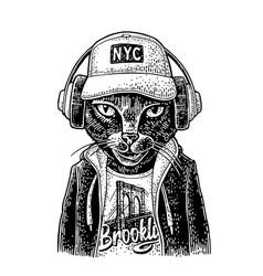Cat to headphones dressed in hoodie vintage vector