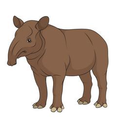 color a plain tapir vector image