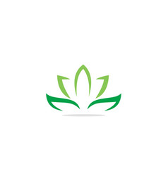 lotus flower eco green leaf logo vector image