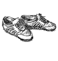 Pair of shoe vector