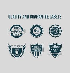 quality and guarantee labels vector image