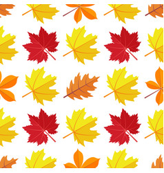 seamless pattern with various colorful vector image