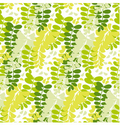 Spring acacia blossom seamless pattern vector