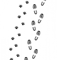 foot prints vector image vector image