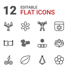 12 ornament icons vector image