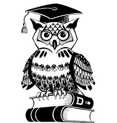 Owl academician in cap sitting on books vector