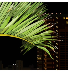 palm leaf on the background of the city at night vector image