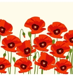 The poppy flowers vector image