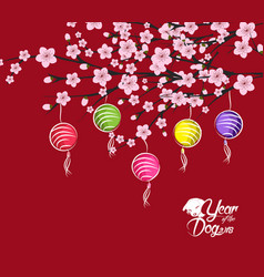 traditional chinese new year blossom and lantern vector image