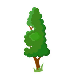 decorative cartoon tree vector image vector image