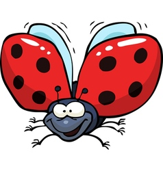 cartoon flying ladybug vector image