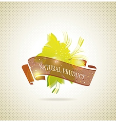 Natural product icon vector image vector image