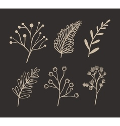 Ornament and rustic leaf of Christmas season vector