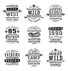 Set of typographic compositions for t shirt vector image
