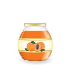 Apricot jam jar vector